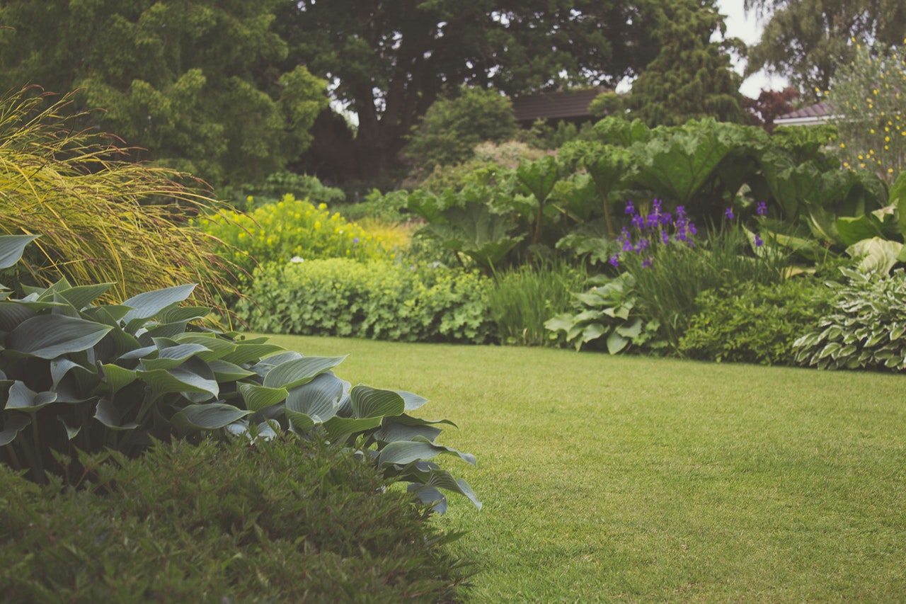 Why You Definitely Should Hire A Landscaper That Is A Professional
